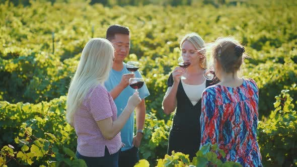 Thumbnail for Multi-ethnic Group of Tourists Tasting Wine in the Vineyard
