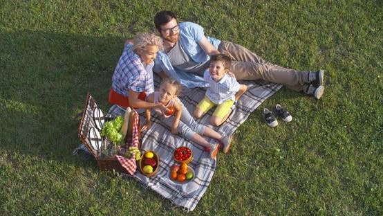 Thumbnail for Family Picnic on Summer Day