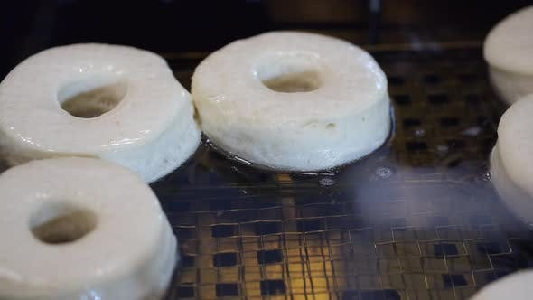 Thumbnail for The Circle-shaped Bases for Donuts Are Fried