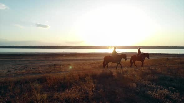 Drone Aerial View of Woman Riding Horses on Open coast.Stallion training.Jogging