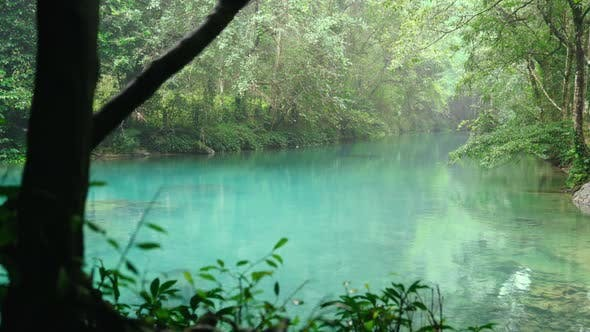 Thumbnail for Still Turquoise Water in a Dense Forest
