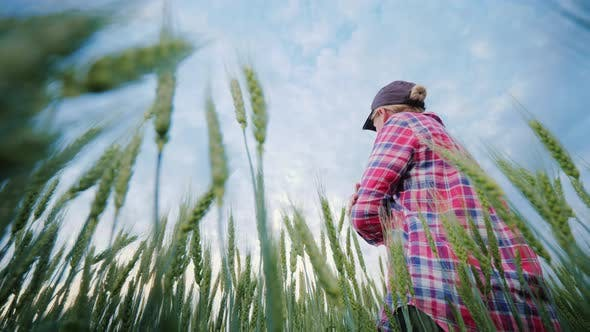 Thumbnail for Young Woman Farmer Standing in a Wheat Field, Looking Forward