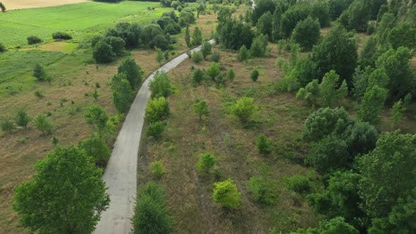 Cover Image for Aerial View Country Road In Nature