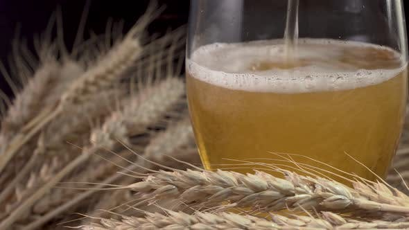 Thumbnail for Pouring Beer Into the Glass