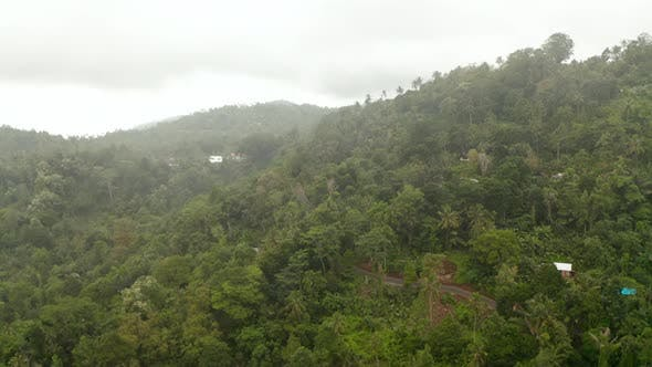 Tropical Mountain Road Surrounded By Dense Rainforest