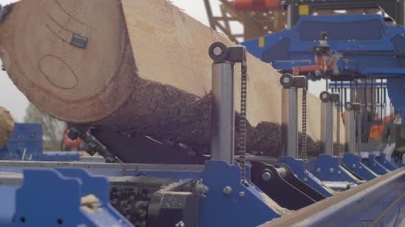 Wood cutting machinery