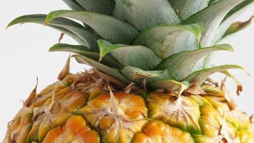Ananasfrucht, Nahaufnahme