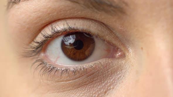 Thumbnail for Close Up Beautiful Brown Eye Opening Human Iris Macro Natural Beauty, Woman, Macro