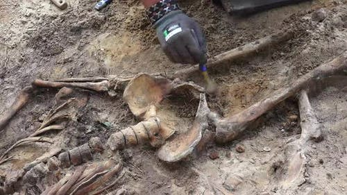 Massengrab oder archäologische Ausgrabungen 7