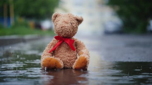 Lonely Teddy Bear Sits in a Puddle in the Rain