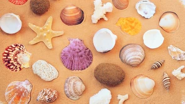 Thumbnail for Beach 15