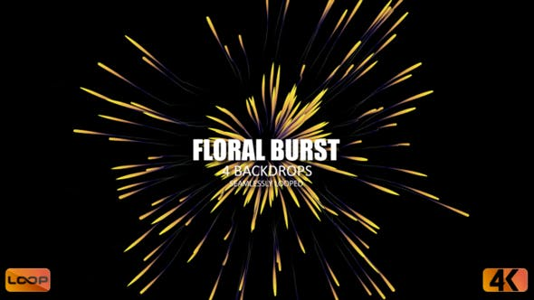 Thumbnail for Floral Burst