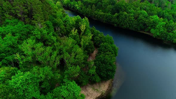 Aerial View on Stream in Forest