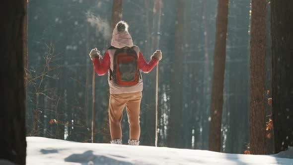 Женщина, катающаяся на лыжах в лесу остановилась, чтобы насладиться видом на падающие снежинки