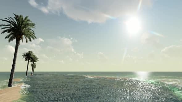Thumbnail for Palm Island