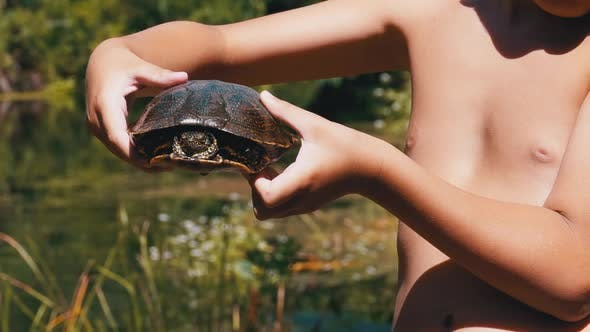 Boy Holds Turtle in Arms on Background of a River with Green Vegetation