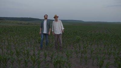 Farmers Walk and Talk on the Corn Fields