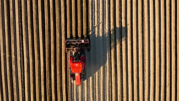 Aerial View of Tractor Performs Seeding on the Field