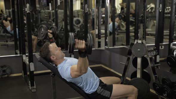 Thumbnail for Muscular man holding dumbbell above the head at the gym.