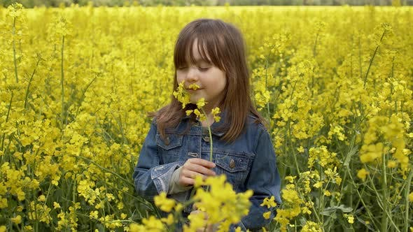Thumbnail for A Beautiful Girl with Posing Against a Yellow Rapeseed Field. She Smelling Yellow Canola Flowers
