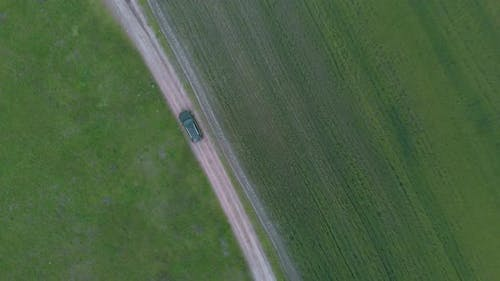Car riding off road in fields of wheat and crops, top aerial view.