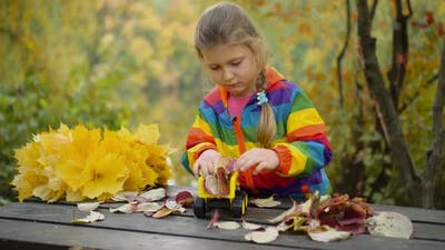 A little girl playing with a toy car on an autumn day.
