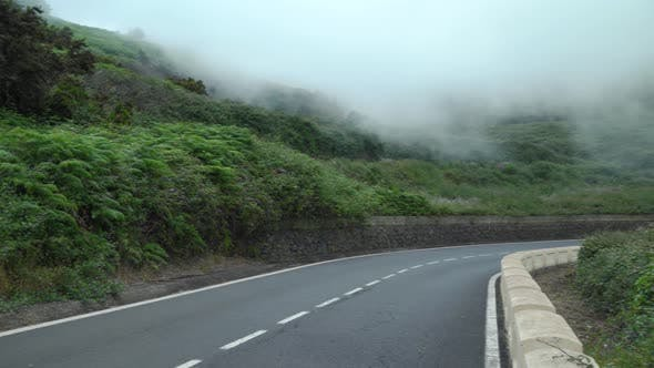View on a Mountain Road at Cloud Level, Slopes Covered with Green Vegetation and High Humidity.
