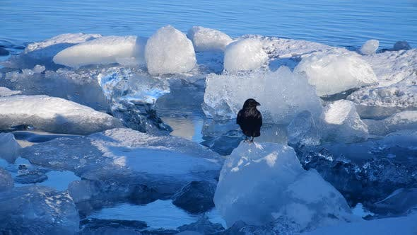Icebergs at Ice Lake. Ice and Snow Winter Nature Landscape