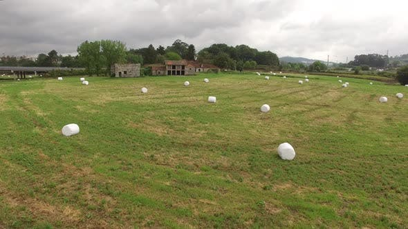 Thumbnail for Hay Bales on the Field Farm Land