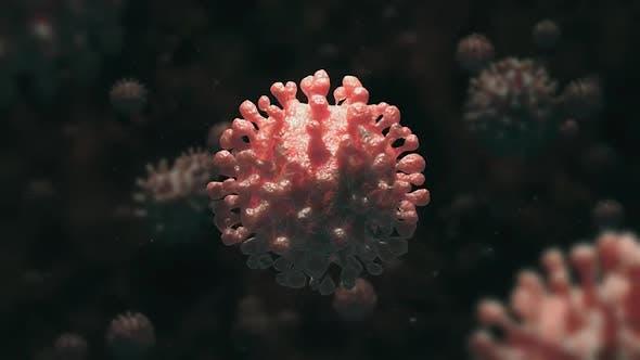 Thumbnail for Coronavirus 4