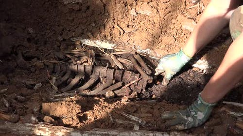 Exhumierung der menschlichen Überreste 3