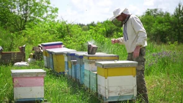 Beekeeper works in apiary. Beekeeper fumbles bee hive with white smoke