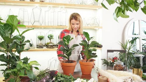 Good-looking Lady with Plants in Pot