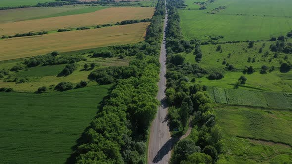 Aerial View Road With Trees Near Field
