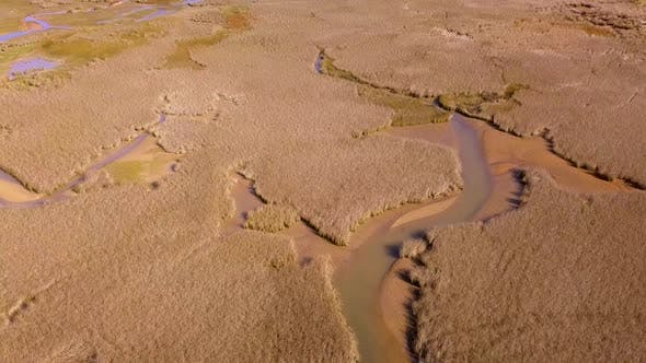 Thumbnail for Wetlands from air