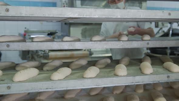Thumbnail for Bäckerei Backen Bäckerei, der Mitarbeiter der Bäckerei verteilt die Backwaren aus dem Teig