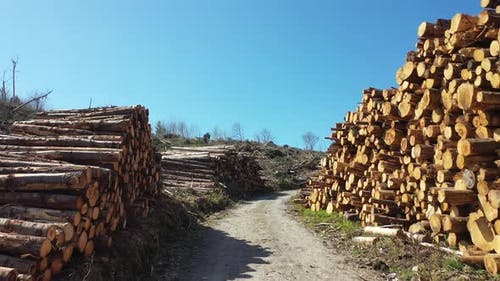 Timber Stacks Aerial at Bonny Glen in County Donegal - Ireland