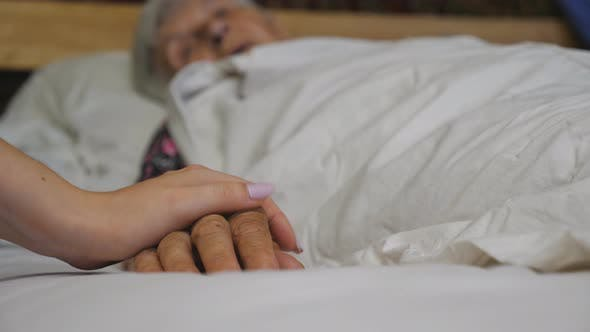 Thumbnail for Granddaughter Takes and Gently Touches Hand of Her Elderly Grandmother in Medical Clinic. Girl