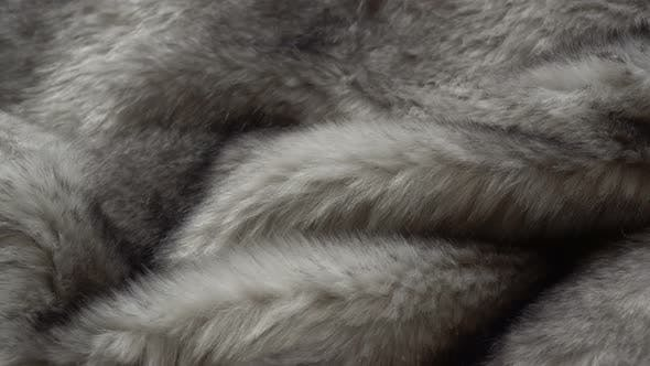 Thumbnail for Rotating Fur Coat Fabrics