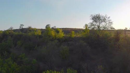 The Mesa Landscape