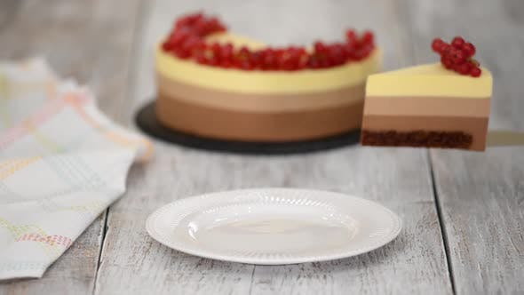 Thumbnail for Piece of Triple Chocolate Mousse Cake with Red Currant