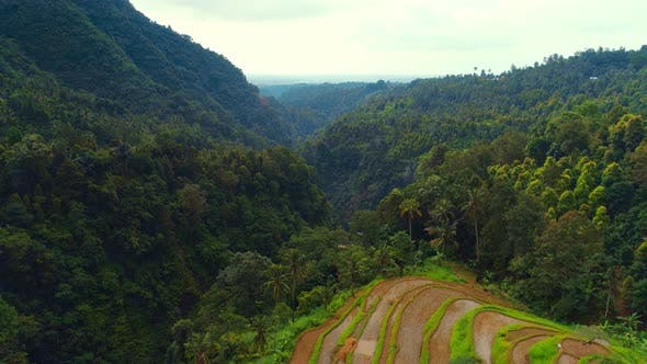Thumbnail for Aerial view of rice terraces and jungle covered gorge