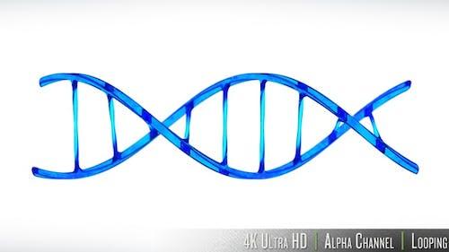 4K DNA Double Helix Strand Loop