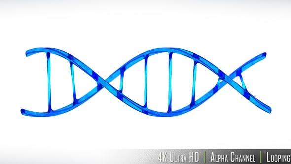 Thumbnail for 4K DNA Double Helix Strand Loop