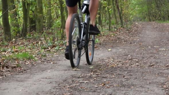 Thumbnail for A Cyclist Rides Down a Path Through a Forest - Rear View
