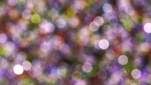 Thumbnail for Multicolored Beads Rotate In The Rays Of The Sun Bokeh
