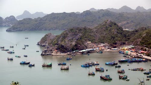 Fishing Port Cat Ba Island, Ha Long Bay, Vietnam