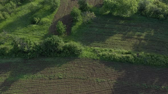 Thumbnail for Plowed agricultural fields from above 4K drone video