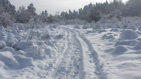 Thumbnail for Pfad unter Schnee bis Dezember 4K LuftVideo