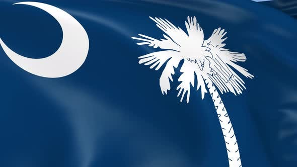 Thumbnail for South Carolina State Flag